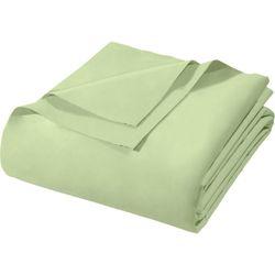 Lencol-Casal-Royal-Plus-Sem-Elastico-Verde-Santista