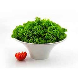 Saladeira-Melamina-28Cm-Profissional-Gourmet-Marcamix